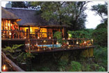 Madikwe-River-Lodge